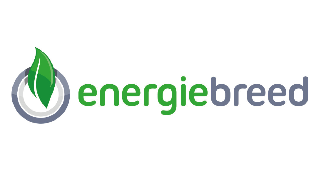 Energiebreed