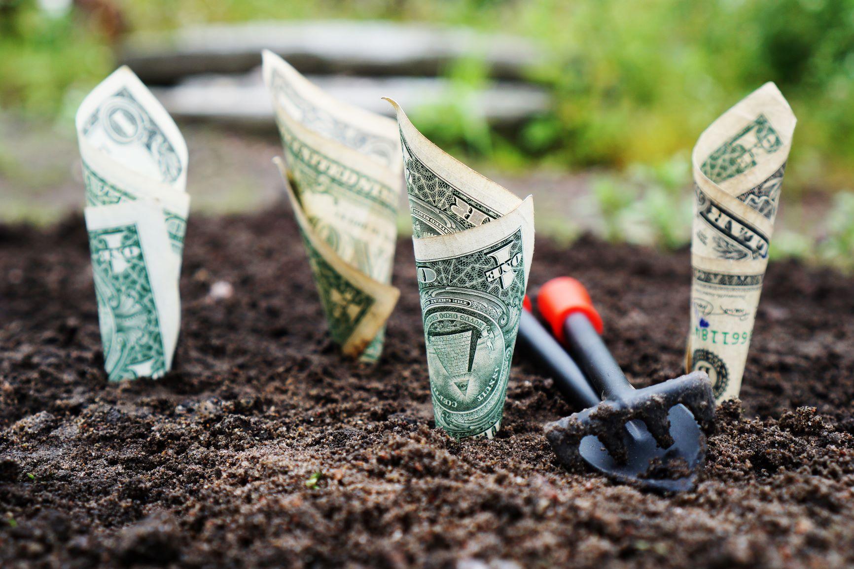 Geld verdienen met circulair werken
